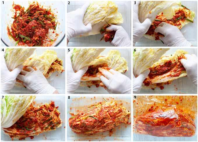 Step-by-step photo of marinating Chinese cabbage to make kimchi.