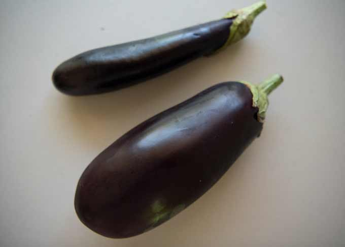 Thin long eggplant and large Aussie standard/American eggplant.