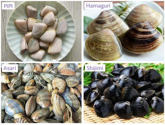 Four different kinds of clams.
