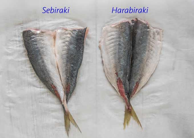Butterfried horse mackerel using sebiraki method and harabiraki method.